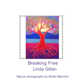 Breaking Free ebook cover.jpeg